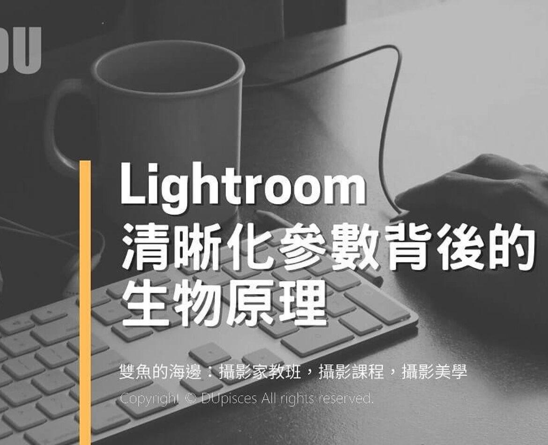 淺談 Lightroom參數的生理機制-2021新版
